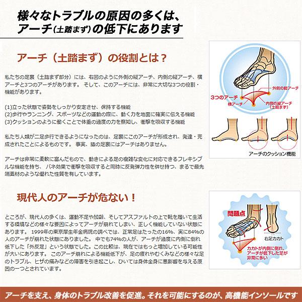シダス ウィンター3D
